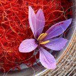 فروش زعفران در مشهد با قیمت کارشناسی
