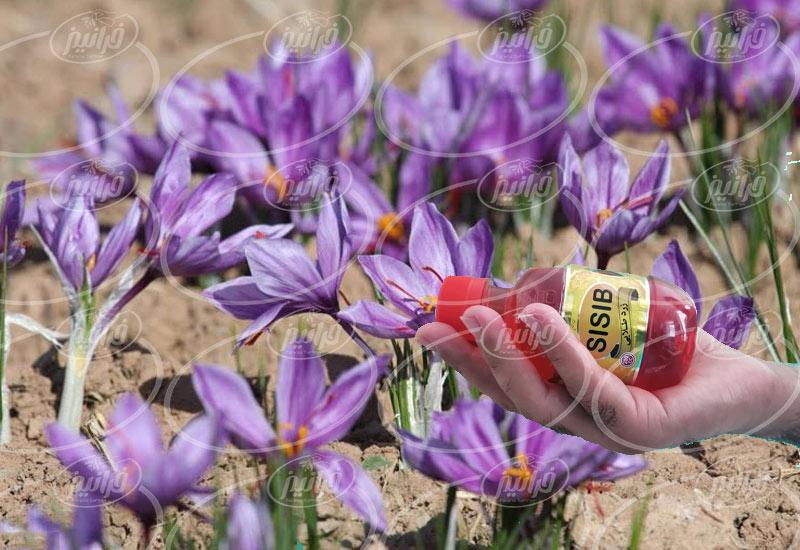 خریداری مایع زعفران سی سیب با تحویل اکسپرس